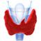 hipotiroidism1