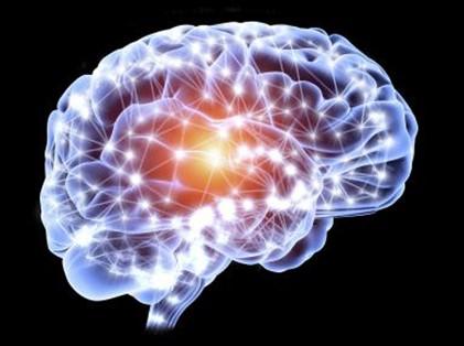 neuromodelare